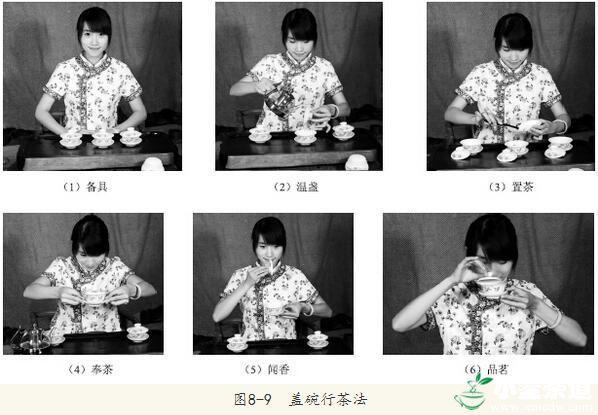 各种茶类的冲泡方法